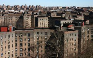 The Son was raised in the Queensbridge Houses